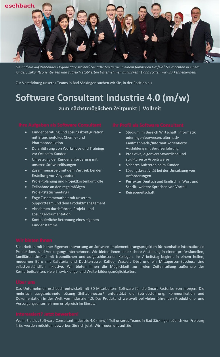Job Software Consultant Industrie 40 Mw