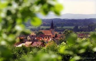 Samtgemeinde Sachsenhagen