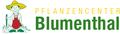 H & B Blumenthal GmbH