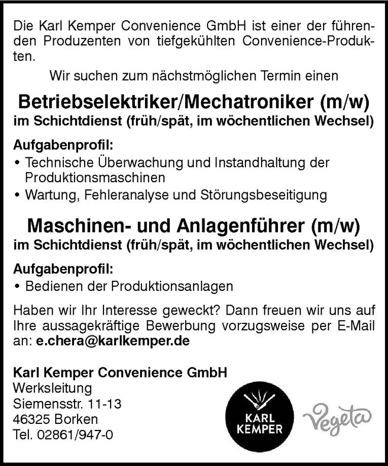 Betriebselektriker/Mechatroniker (m/w)
