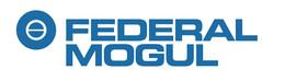 Federal Mogul Friedberg GmbH