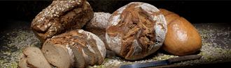 Mühlenbäckerei Schmacke Gmbh