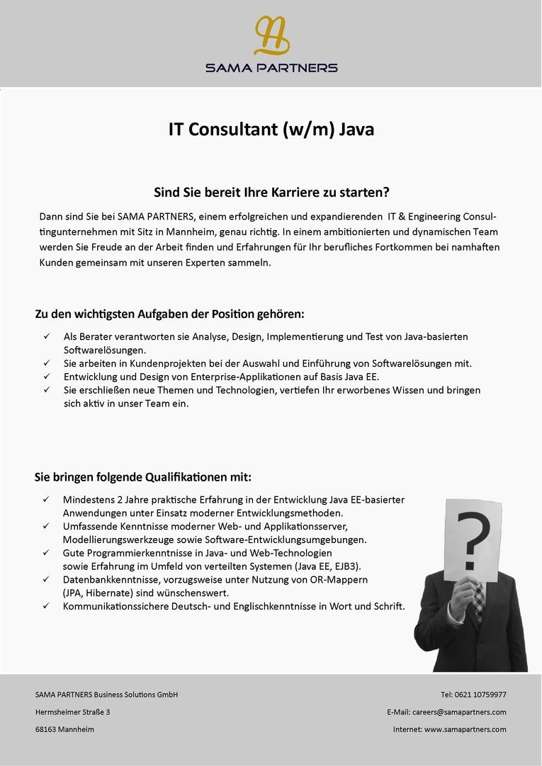 IT Consultant (w/m) - Java