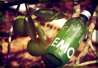 Lemonaid Beverages GmbH
