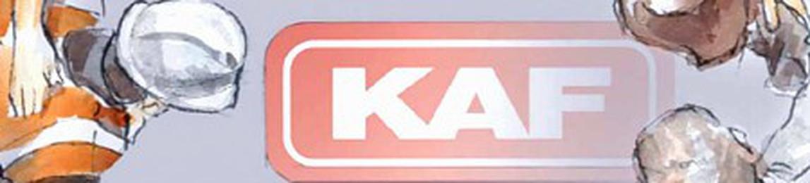 KAF Falkenhahn Bau AG