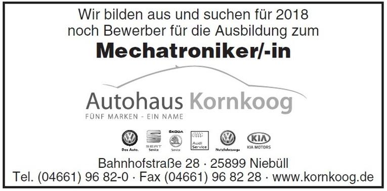 Ausbildung Mechatroniker/-in