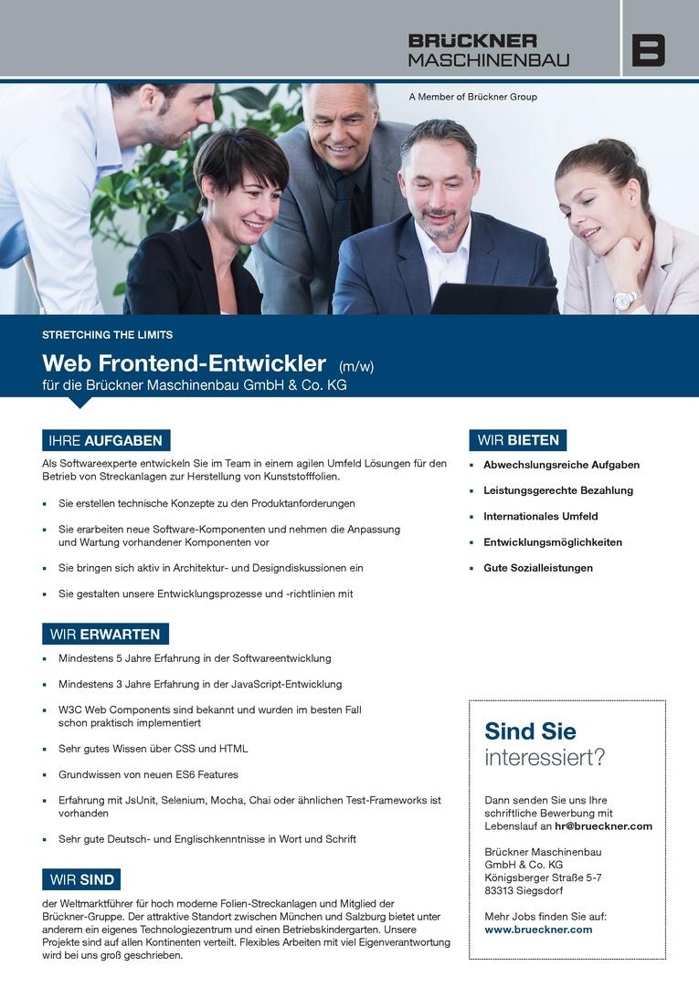 Web Frontend-Entwickler
