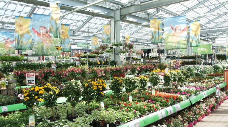 Fachverkäufer/-in Gartencenter - Schwerpunkt Pflanze