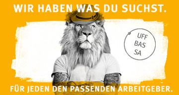 RheinneckarJOBS.de Jobs