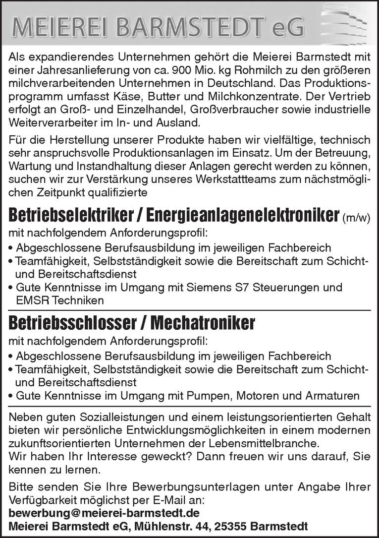 Betriebselektriker / Energieanlagenelektroniker (m/w)