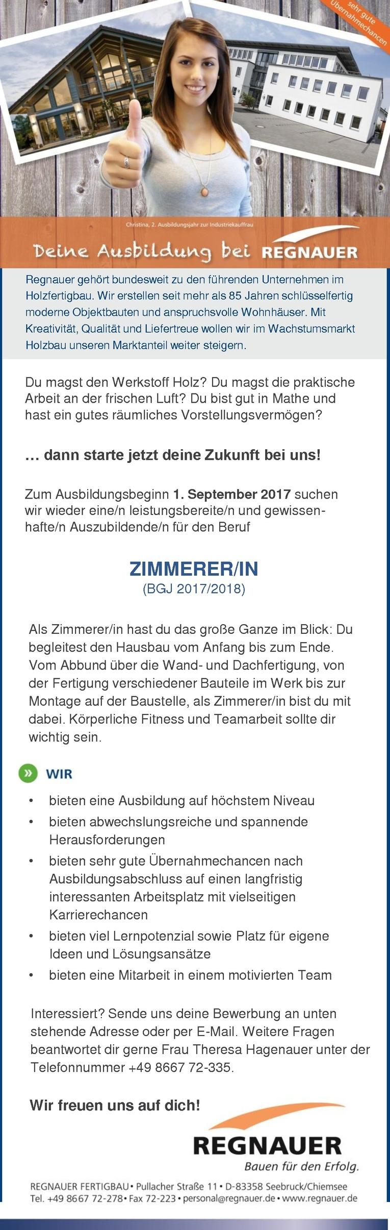 Auszubildende/n als ZIMMERER/IN (BGJ 2017/2018)