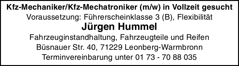 Kfz-Mechaniker/Kfz-Mechatroniker (m/w)