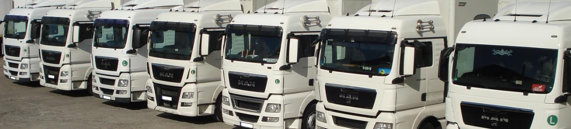 VAN DEN HEUVEL Logistik & Transport GmbH & Co. KG