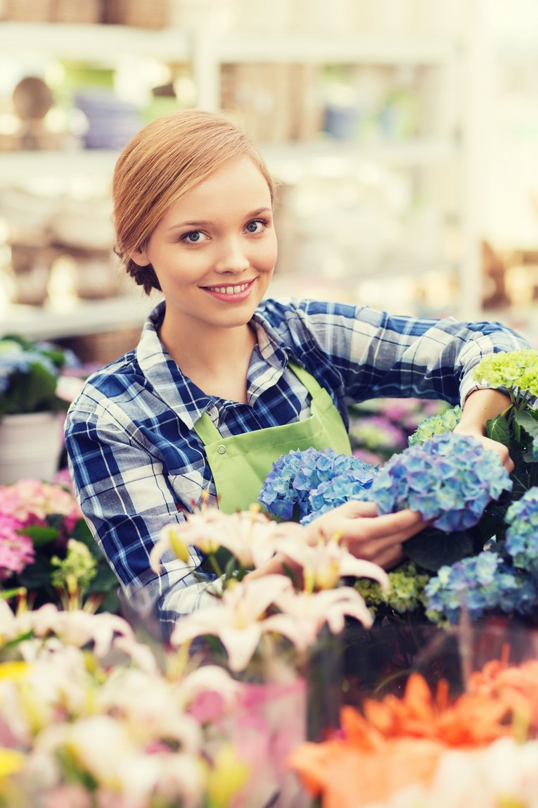 Ausbildung zum/r Gärtner/in – Fachrichtung Zierpflanzenbau