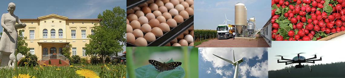 WIMEX Agrarprodukte Import und Export GmbH