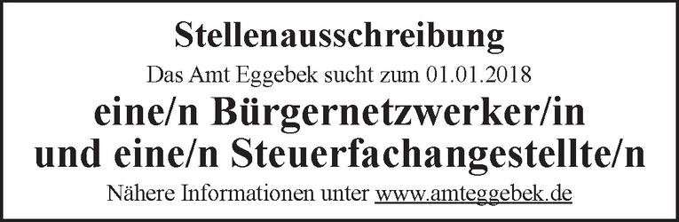 Bürgernetzwerker/in
