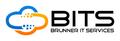 BITS - Brunner IT Services GmbH & Co. KG