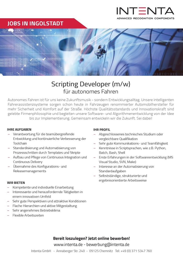 Scripting Developer (m/w) für autonomes Fahren