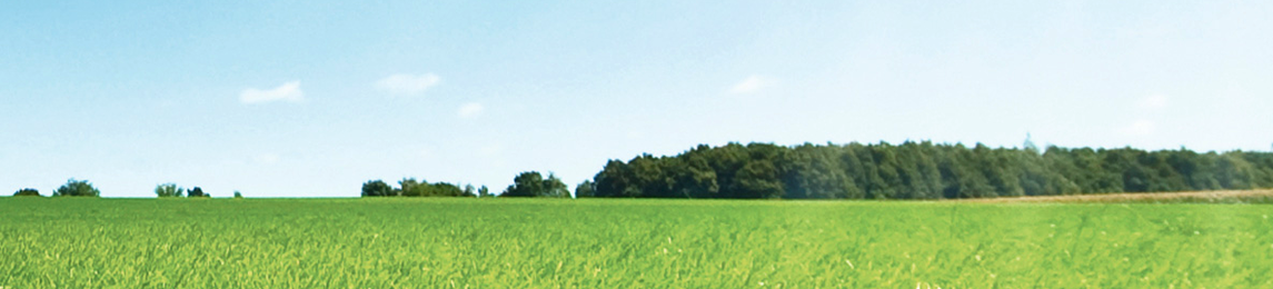 Schmack Biogas GmbH (Viessmann Group)