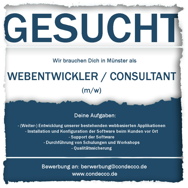WEB - Entwickler / Consultant (m/w)