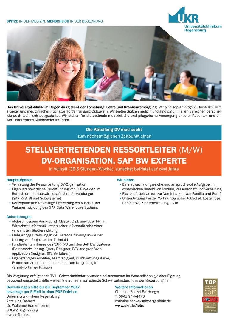 STELLVERTRETENDEN RESSORTLEITER (M/W) DV-ORGANISATION, SAP BW Experte