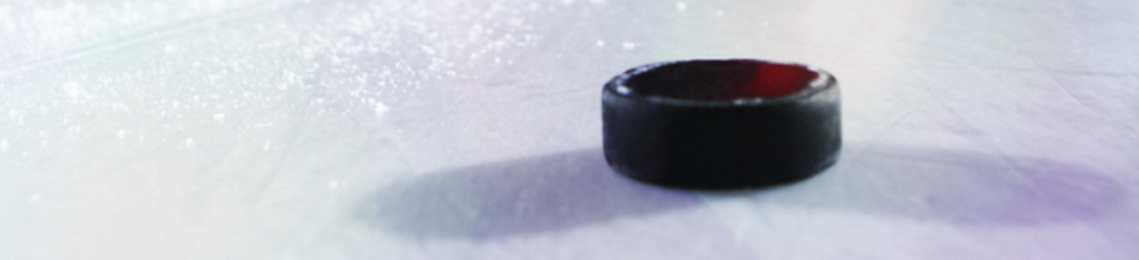 Ice Business GmbH Professional Ice Rinks
