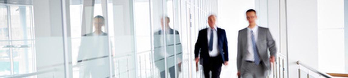 DSM Treuhand GmbH Wirtschaftsprüfungsgesellschaft Steuerberatungsgesellschaft