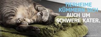 Tierschutzverein Tegernseer Tal e.V. Tierheim Rottach-Egern