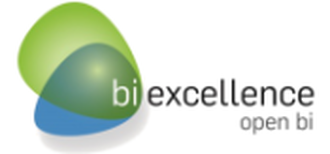BI eXcellence Software GmbH