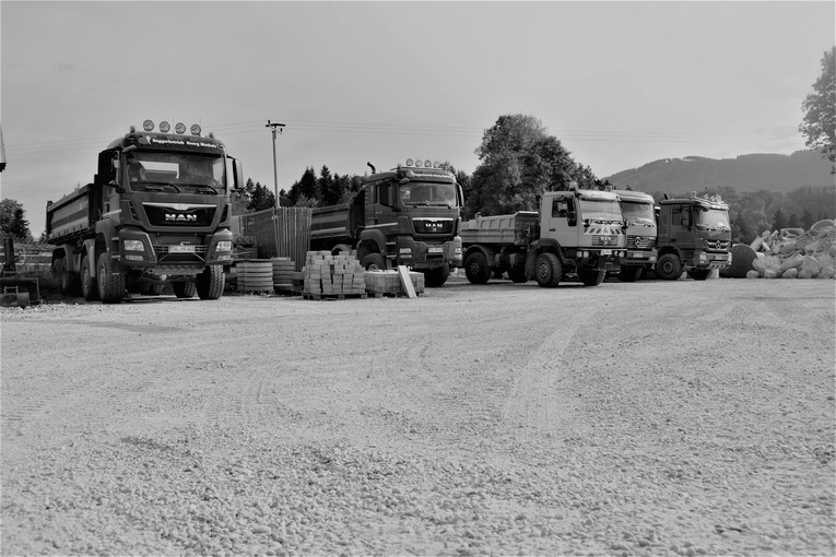 LKW-Fahrer (m/w)